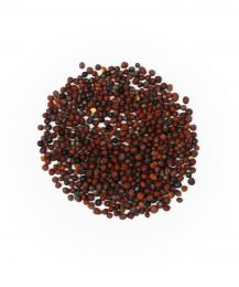 Schwarze Senfkörner (Semen Sinipis tot)